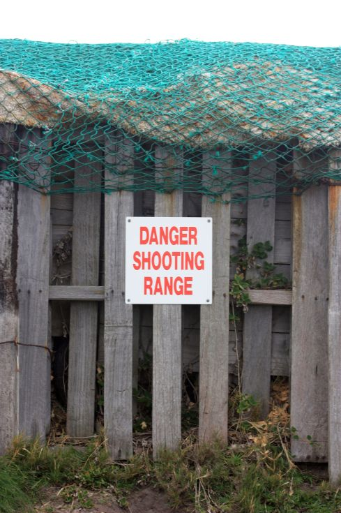 Tired of being in constant danger? Take yourself off to the Danger Shooting Range, and pop a few caps in it.