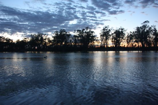 Plushes Bend of Murray River at civil twilight