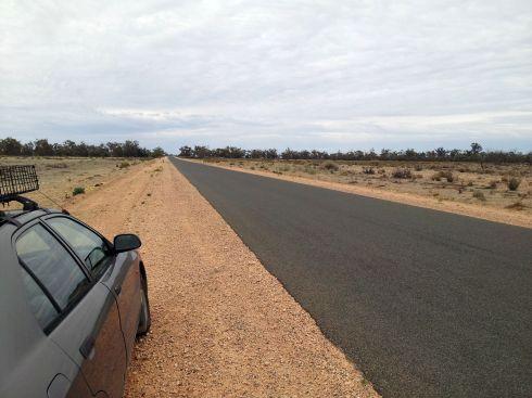 Old Renmark Road, Wide Open Woodland