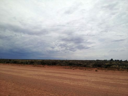 Old Renmark Road - Northish view