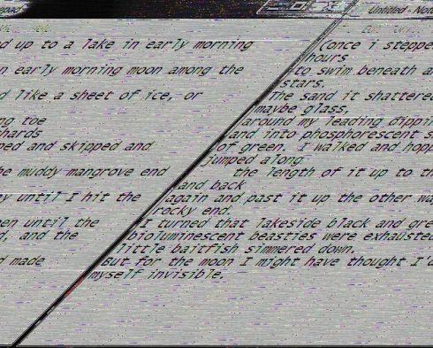 Glitch Paper Napkin poem