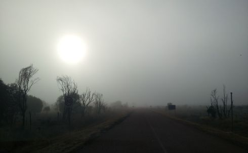 Pajingo access road at sunrise
