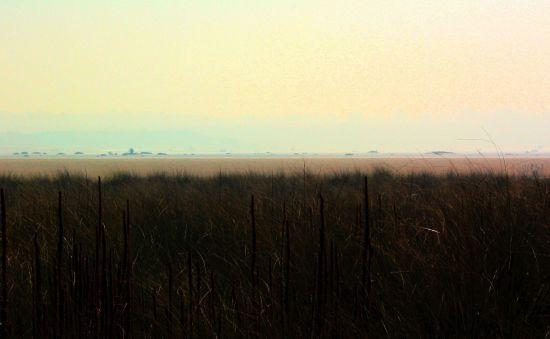 Salt lake - Gippsland