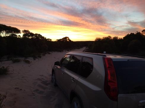J on Moonah Track, Big Desert Wilderness Area